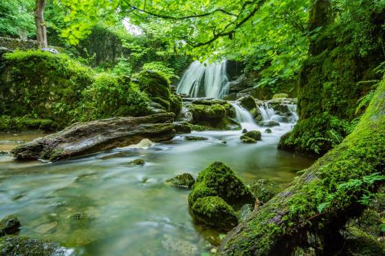 προστατευόμενη περιοχή φυσικού κάλλους αίτηση αποζημίωσης
